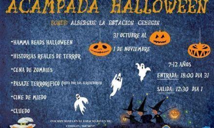 La Concejalía de Juventud de Cehegín organiza una Acampada sobre Halloween