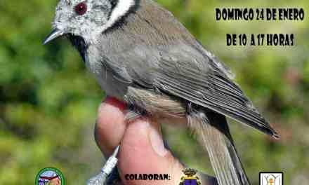 El paraje de las Fuentes del Marqués de Caravaca acoge este domingo una jornada de ornitología