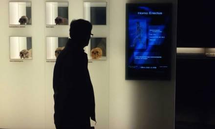 El Museo Arqueológico de Murcia organizará una exposición especial y abrirá nuevas salas coincidiendo con su décimo aniversario