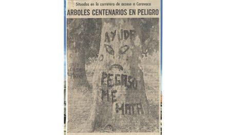 El dilema histórico por las alamedas de Caravaca