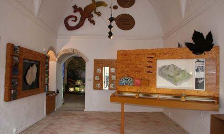 Turismo programa talleres infantiles en el Centro de la Naturaleza de las Fuentes del Marqués