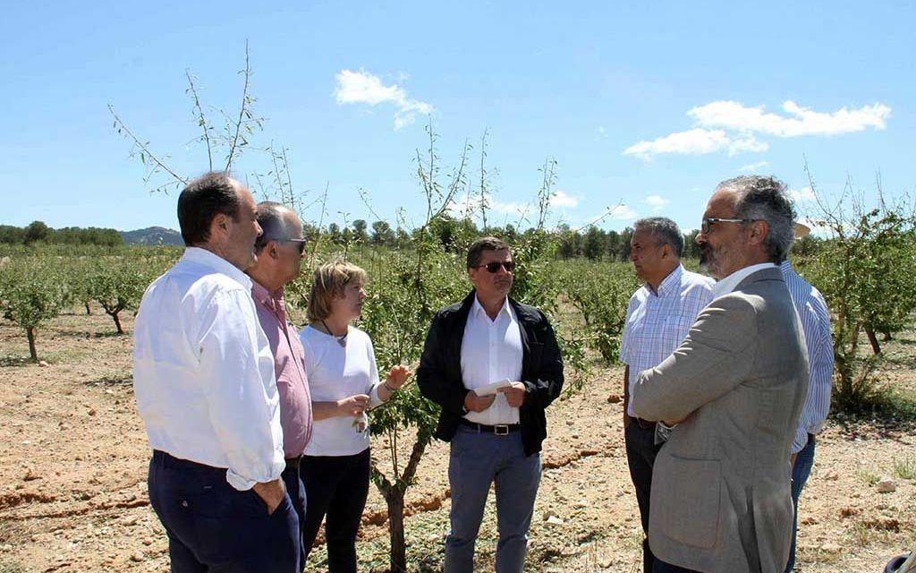 El PSOE pide ayudas en la Asamblea Regional para los afectados por los daños causados por la tormenta de granizo del pasado 4 de junio
