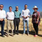 Los cultivos de secano de la Región de Murcia favorecen la protección de aves esteparias