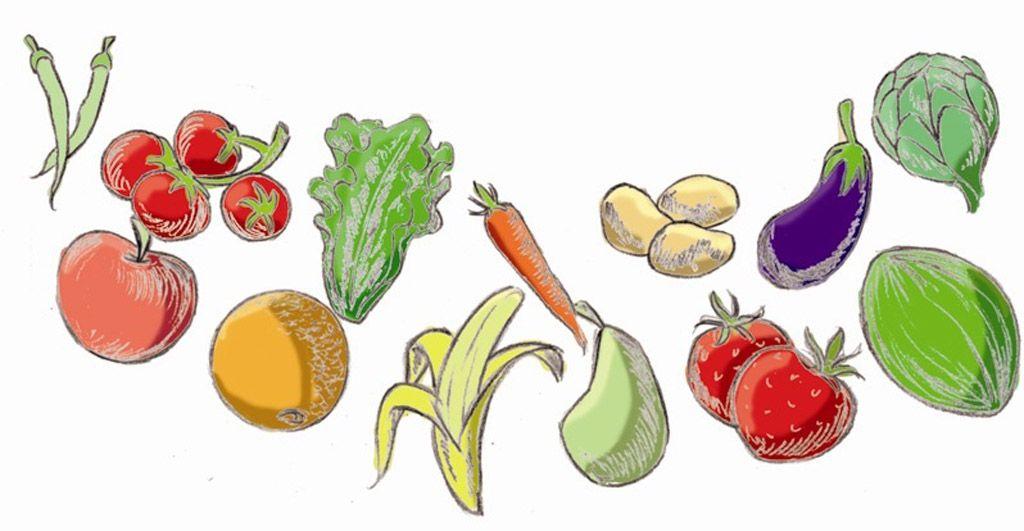 Frutas, verduras y hortalizas… ¡siempre!