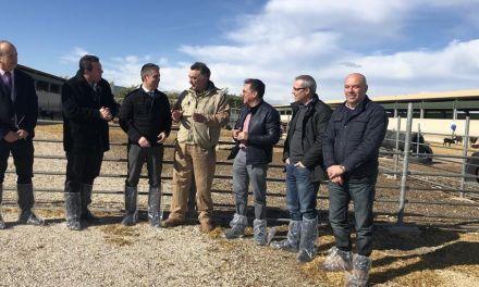 Agricultura solicitará al Ministerio que declare a la Región 'oficialmente indemne de brucelosis'