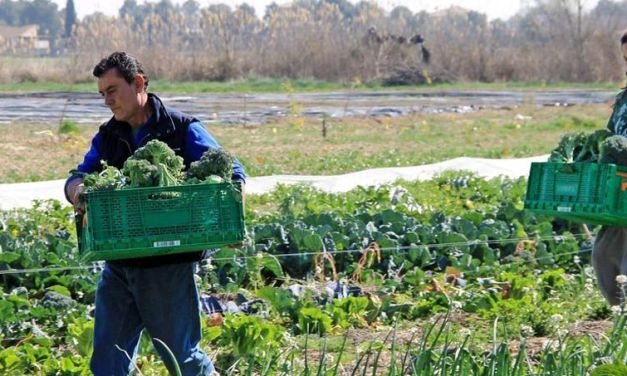 Murcia celebrará su I Congreso Científico Escolar sobre Agroecología y Sostenibilidad Alimentaria
