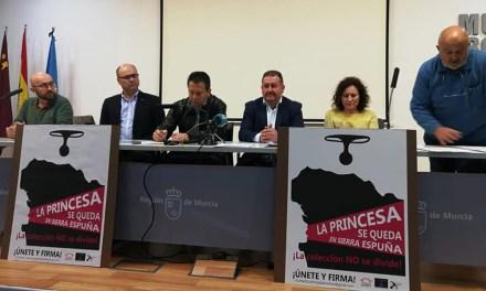 Una plataforma integrada por Totana, Pliego y Mula pide que no se dividan los restos que conforman la tumba de la princesa