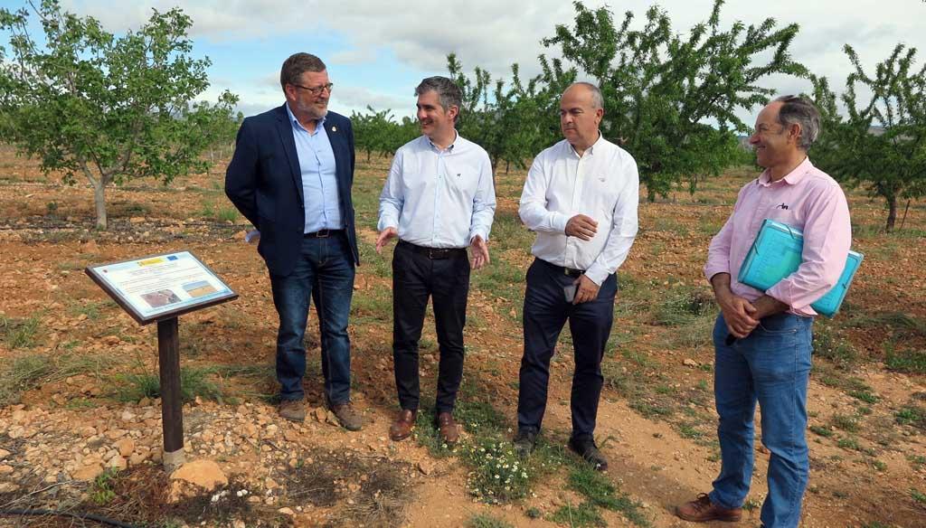 El cultivo de variedades de pistacho da buenos resultados en el Centro de Demostración Agraria 'Las Nogueras' de Caravaca