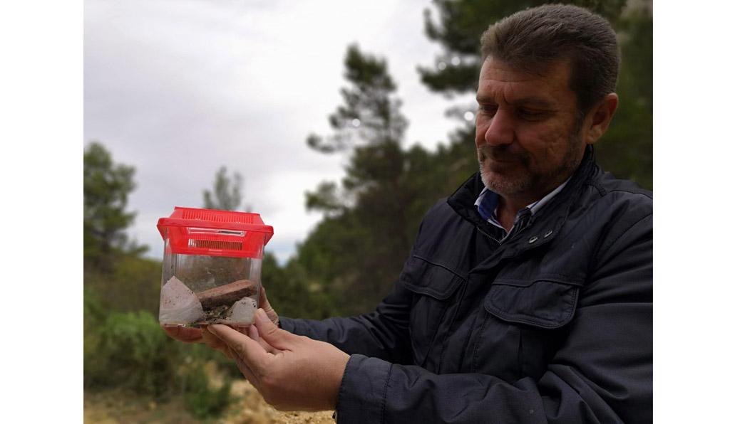 Medio Natural libera 15 ejemplares de sapo partero bético en Sierra Espuña tras desarrollarse en un acuario para asegurar su supervivencia