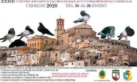 Este fin de semana se celebra el XXXIII Concurso-Exposición de palomos de Raza Autóctonas Murcianas y Españolas