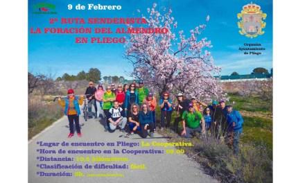 Este domingo, ruta senderista 'Floración del almendro' en Pliego