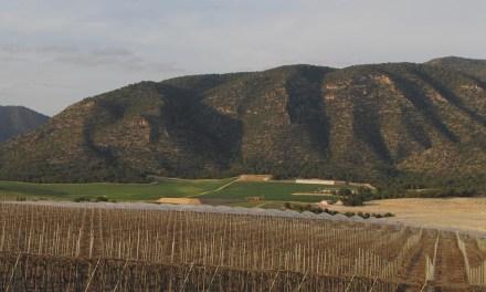 El Consejo de Defensa del Noroeste insta al Ayuntamiento a frenar las graves transformaciones a intensivo agrícola y ganadero que afectan zonas protegidas del Río Argos y Sierra del Gavilán