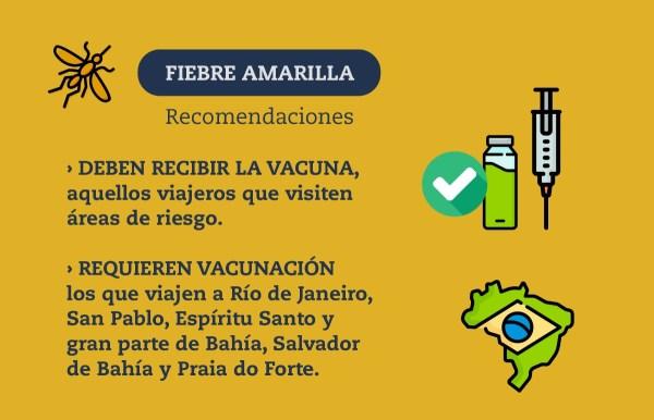 Resultado de imagen para fiebre amarilla brasil