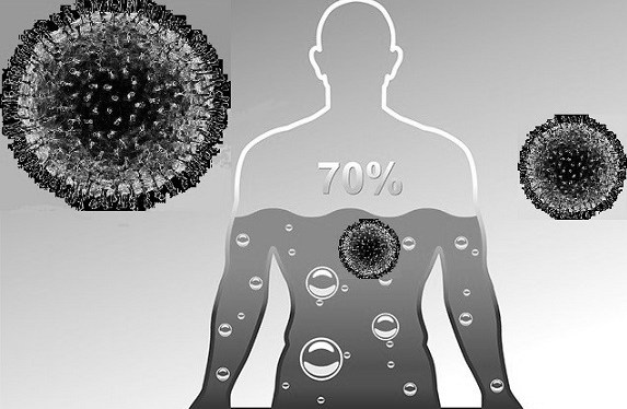 The Human Body and the Pandemic