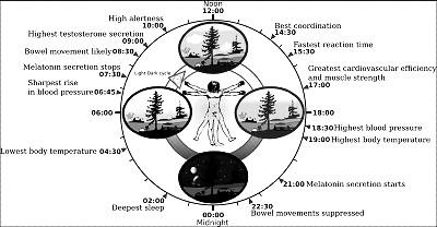 Cronobiología y Astrología
