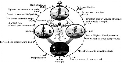 Chronobiology & Astrology