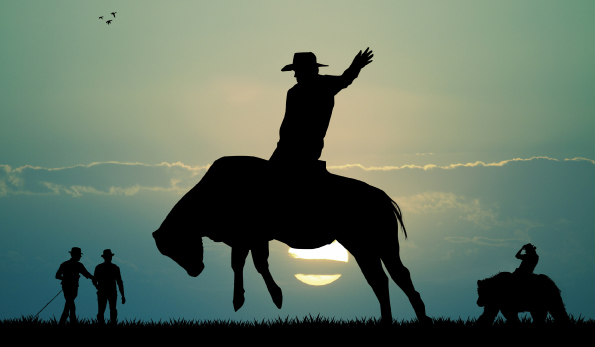 caballo bravo