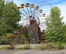 ¿Por qué la radiación de Chernóbil no acabó con las plantas?