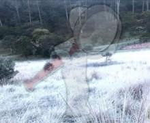 San Joaquín con temperaturas de – 1°C, cae la primer nevada