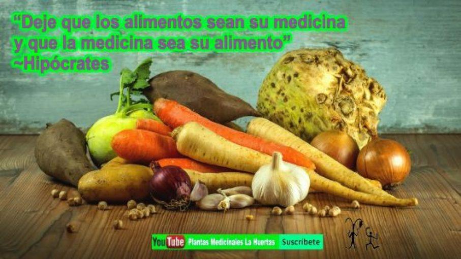 Plantas Medicinales La Huertas