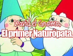 David el Gnomo