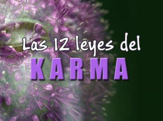 LA LEY DEL KARMA. 12 LEYES DEL KARMA. PRINCIPIOS DEL BUDISMO
