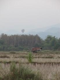 Au loin on peut distinguer une montgolfière