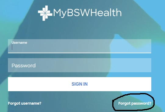 Forgot Password myBSWhealth