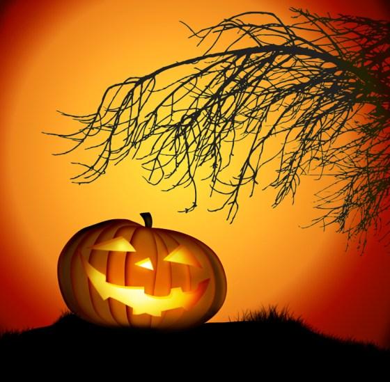 vector based pumpkin