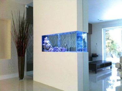 Creative Wall Auarium designs For Home Decoration and Amazing Room Separator Part 20
