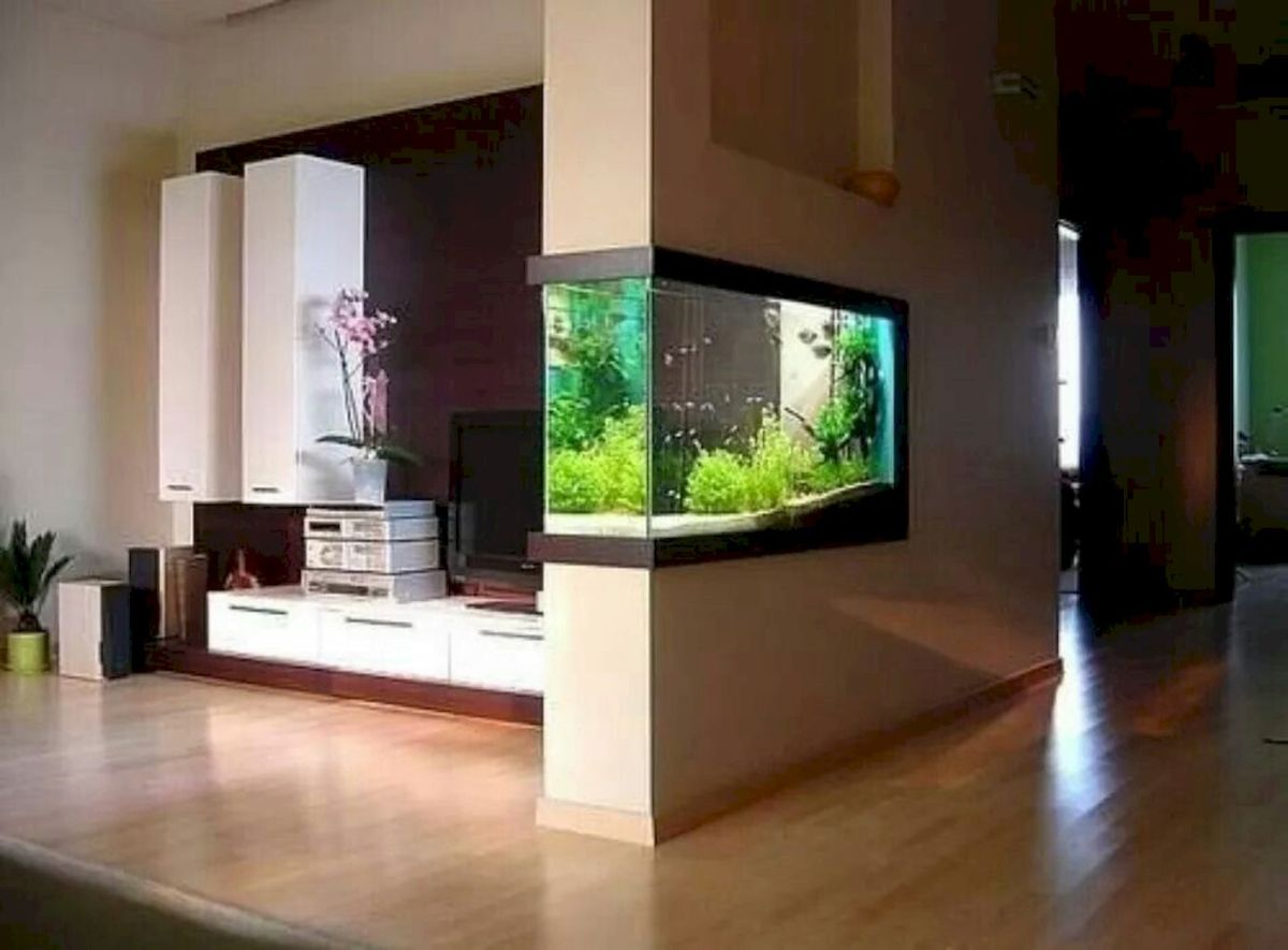 Wall Mounted Fish Tank and Aquarium