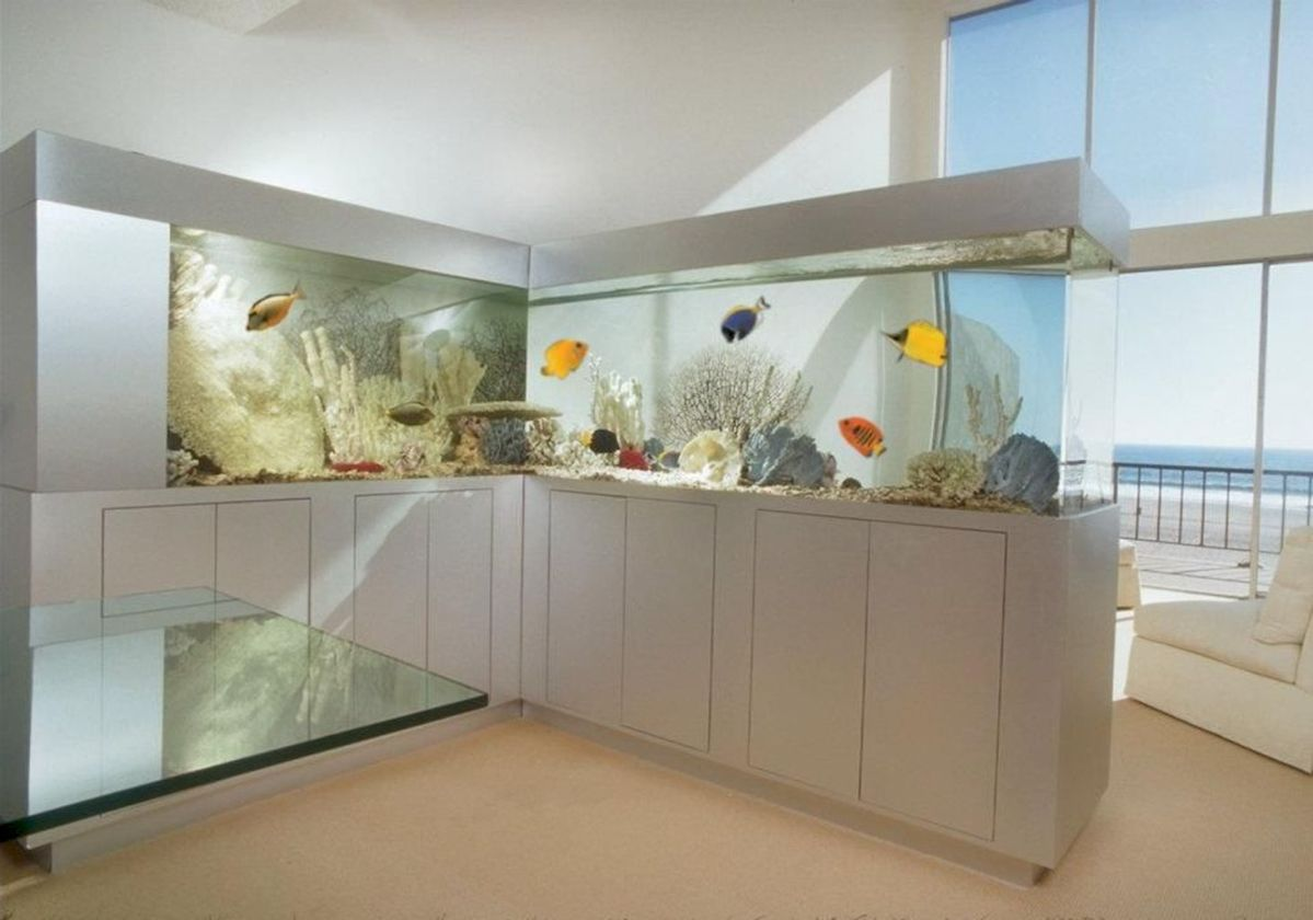 Exotic Wall Mounted Aquarium Giving Better Mood Everyday Part 36