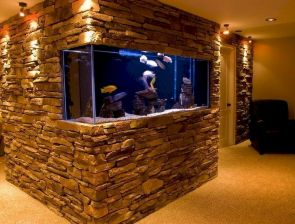 Exotic Wall Mounted Aquarium Giving Better Mood Everyday Part 48
