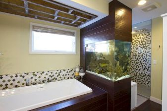 Exotic Wall Mounted Aquarium Giving Better Mood Everyday Part 49
