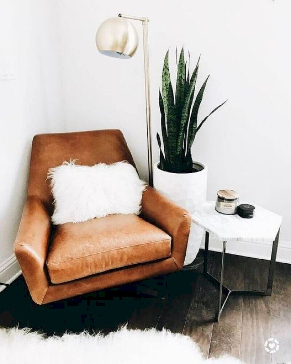 Lively Living Room Vibe with Indoor Plant Decoration Part 24