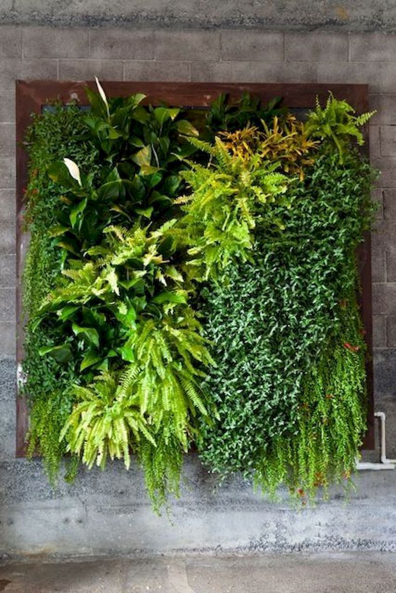 Tropical Decoration Concept with Living Plants Decoration Part 35