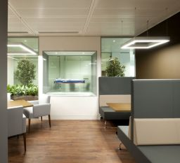 Modern Office Design with Healthy Natural Ideas That Increases Productivity Part 11
