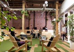 Modern Office Design with Healthy Natural Ideas That Increases Productivity Part 14
