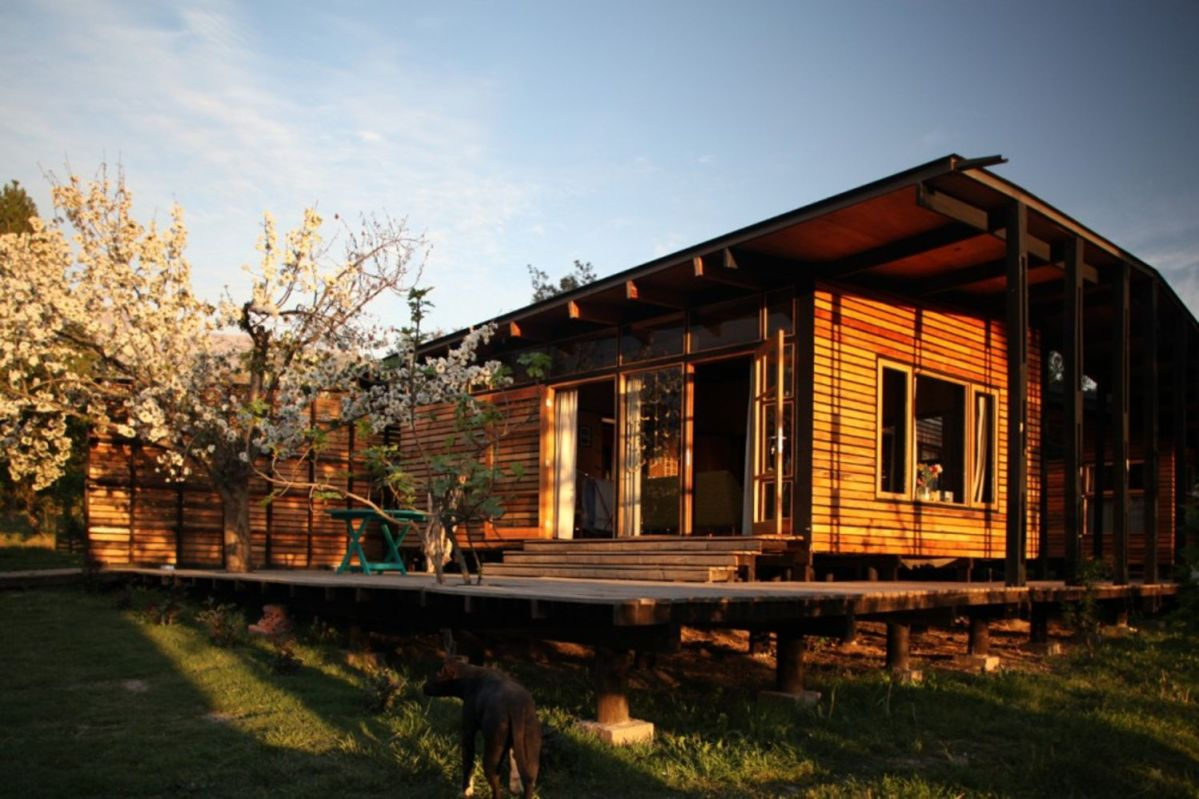Single family house built in the middle of an orchard adopting cabin style with exposed wooden wall Casa Lo Cañas (1)