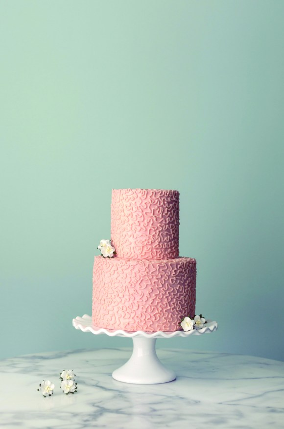 two_tiered_wedding_cake_from_magnolia_bakery.full