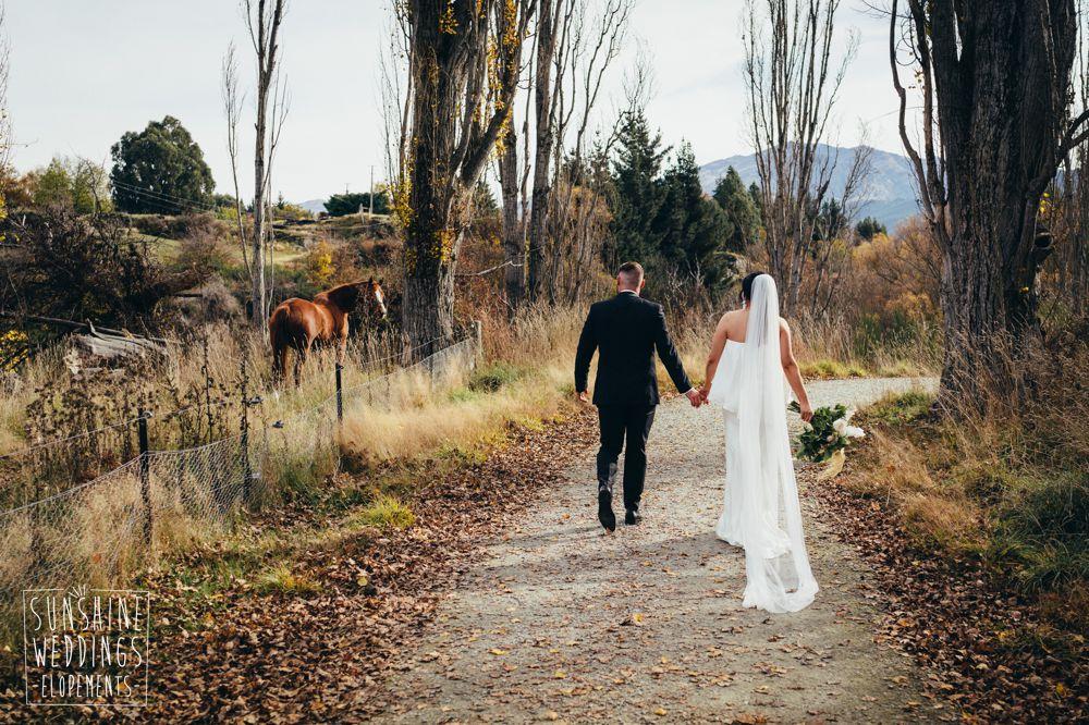Horse watches bride and groom Queenstown