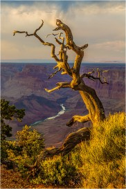 Last Light, Desert View, Grand Canyon