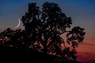 Gary Hart Photography: Crescent at Sunset, Sierra Foothills, California