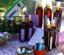 Flowers to Fragrance Lavender Farm