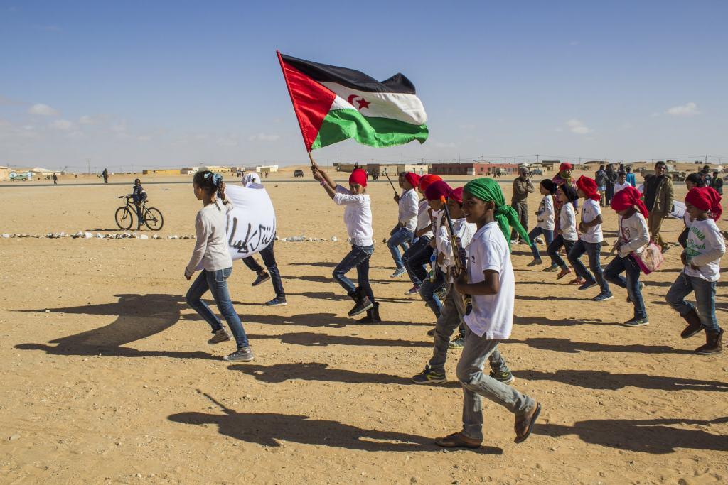 Territorios árabes ocupados: los Altos del Golán y el Sáhara Occidental