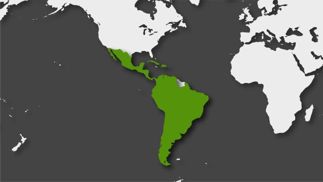 América Latina en 2019