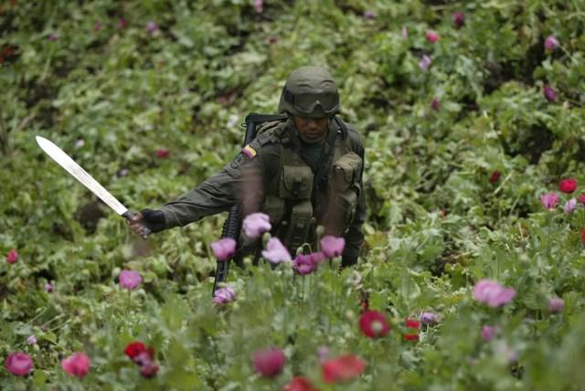 Cómo afecta al narco la crisis en Venezuela