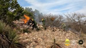 Ejército incendios forestales