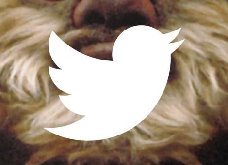 El tuit de noviembre: Ewox