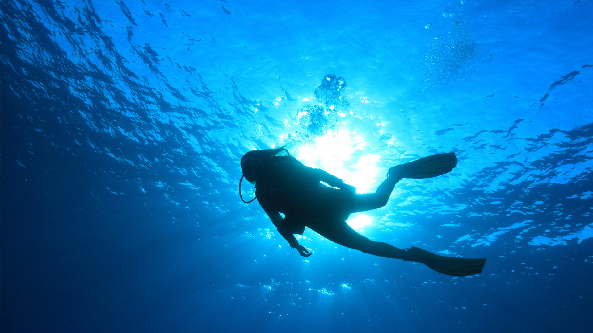 The PADI Certified Scuba Diving Center Teaches And Awards Diplomas Up To The Highest Levels Of